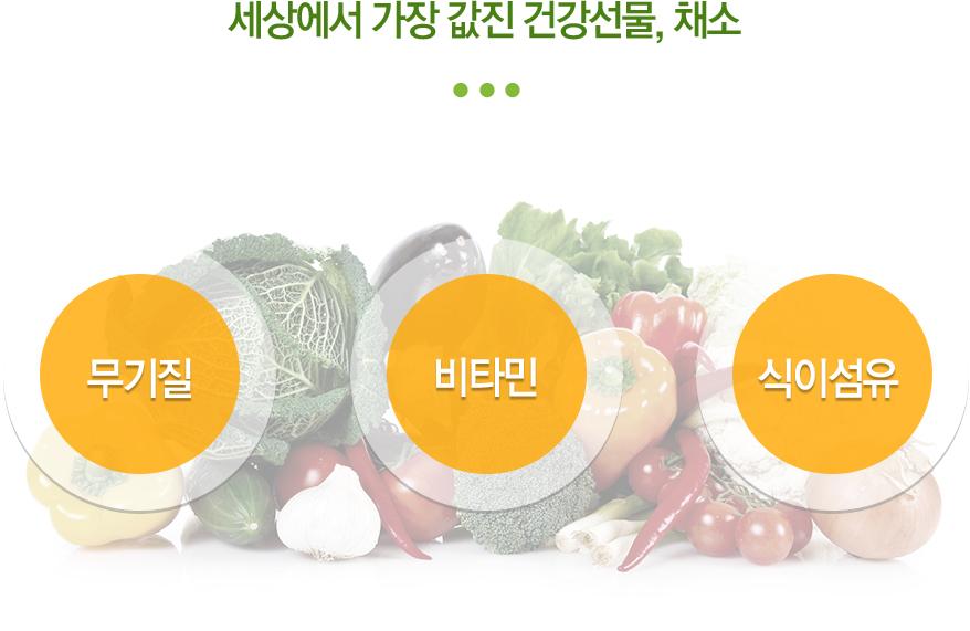세상에서 가장 값진 건강선물, 채소 (비타민, 무기질, 식이섬유)
